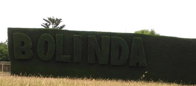 Bolinda