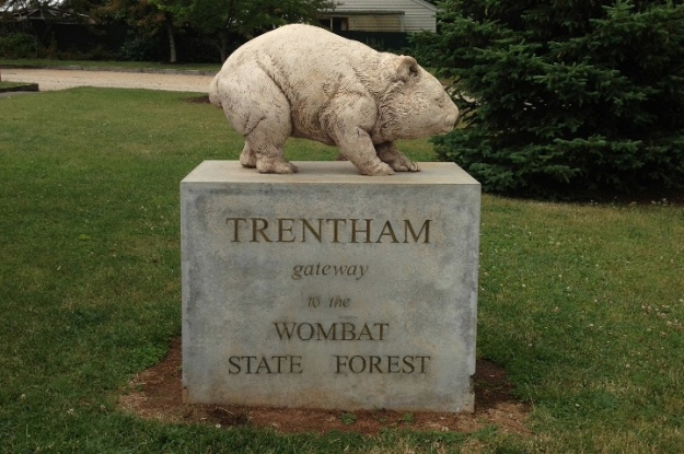 Trentham Wombat reduced