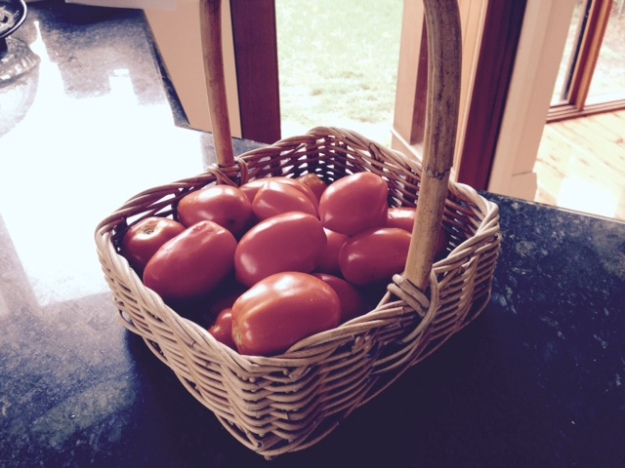 Basket of toms