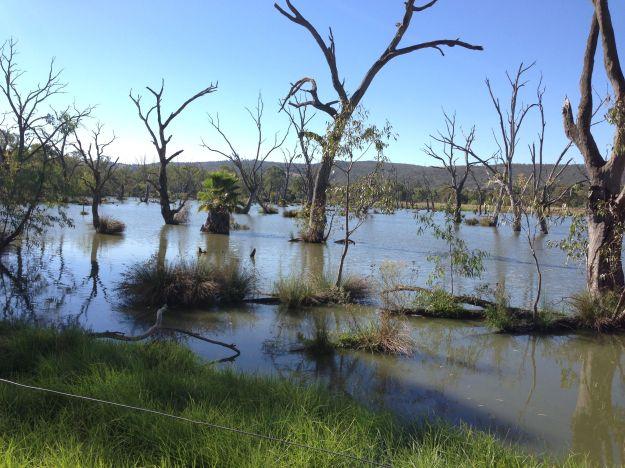 Horseshow lagoon