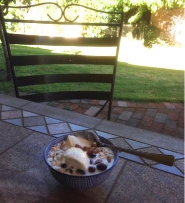 cereal-in-garden