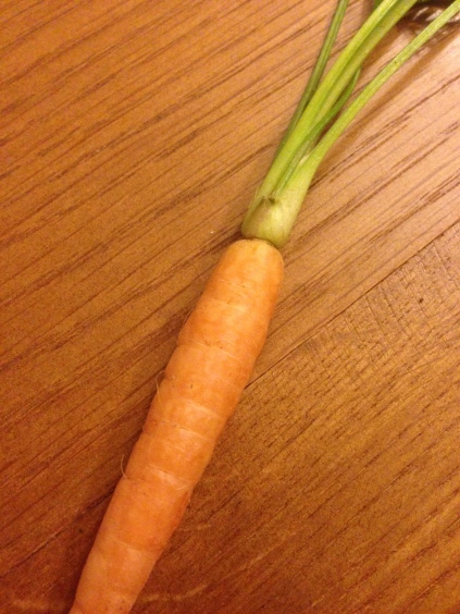 Perfect carrot